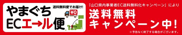 6月22日(火)〜送料無料キャンペーン!