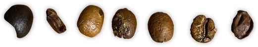 ハンドピックで除外する豆